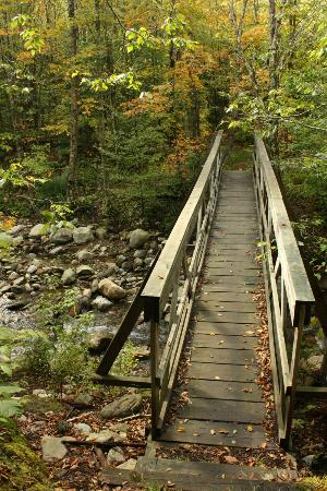 Bucklin Trail: Small bridge