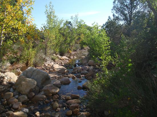 Grand Canyon by One Day Tours: Surprise! Crystal clear brook in the middle of the desert
