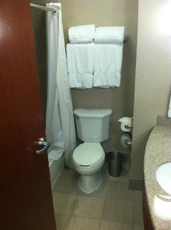 Fairfield Inn & Suites Somerset: toilet