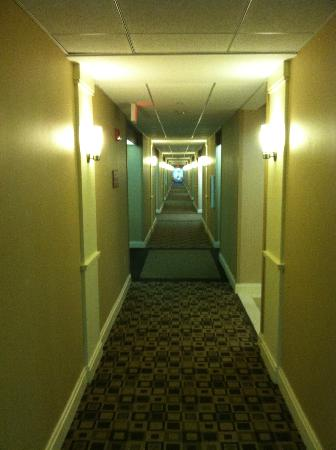 Fairfield Inn & Suites Somerset: hallway