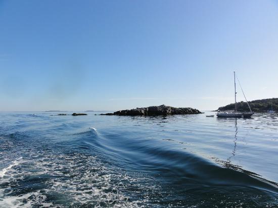 Monhegan Boat Line照片