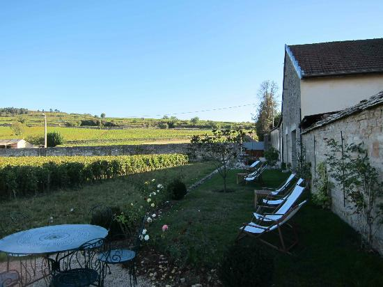 Le Clos du Colombier : quiet side yard with sunset view