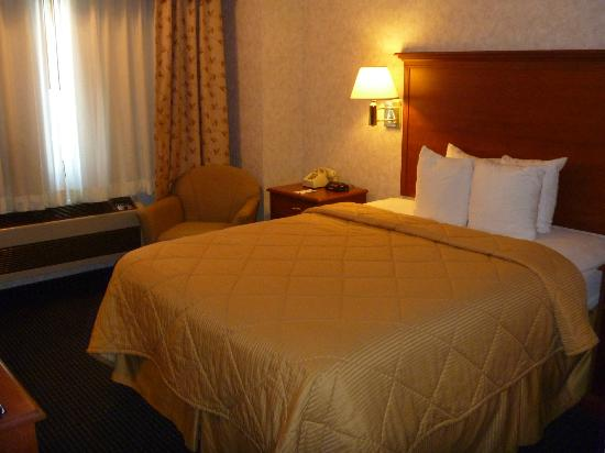Awsome staff picture of comfort inn north platte for Comfort inn bedding