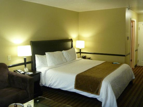 BEST WESTERN PLUS CottonTree Inn: room