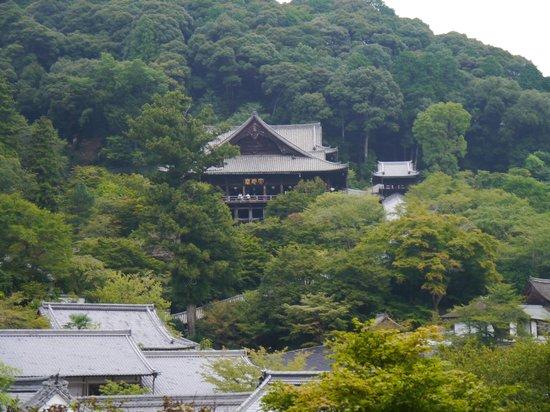 Sakurai, Japón: 本堂の遠景