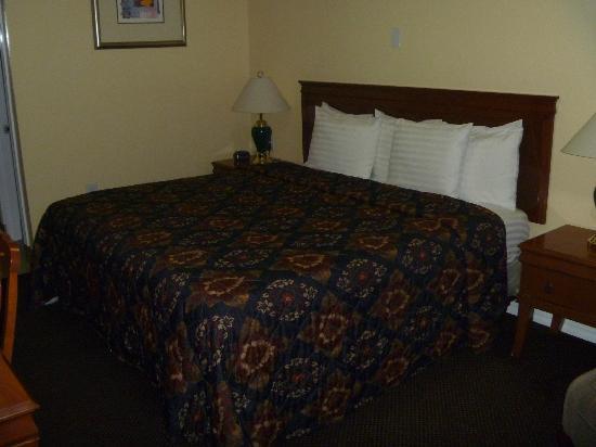 Rodeway Inn Medford: Room