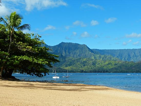 St. Regis Princeville Resort: View from the hotel beach