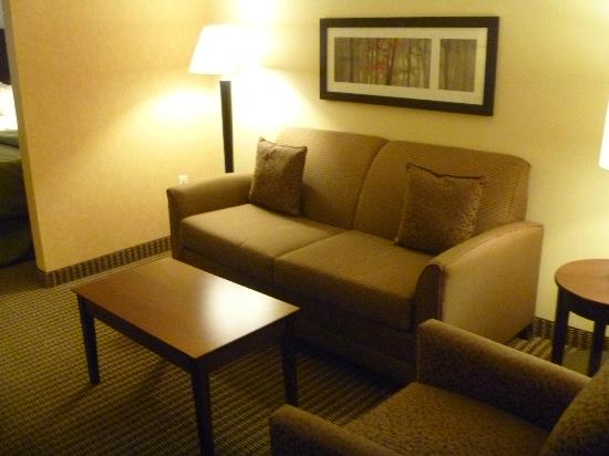 Comfort Suites Hotel & Convention Center Rapid City: room