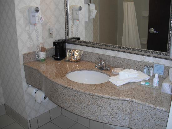 Hampton Inn Titusville / I-95 Kennedy Space Center: Bathroom sink