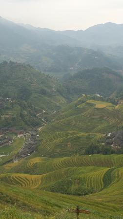 LongJi Terraces Tian ranju Inn: 大寨