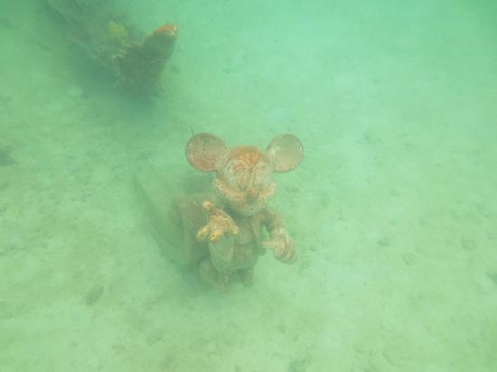 Castaway Cay: Underwater Mickey