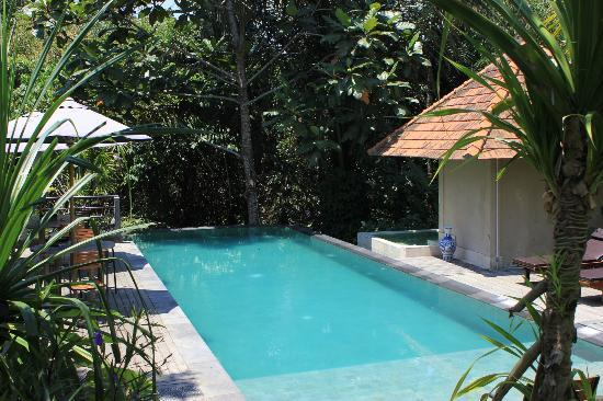 Matahari Cottage Bed and Breakfast: The pool