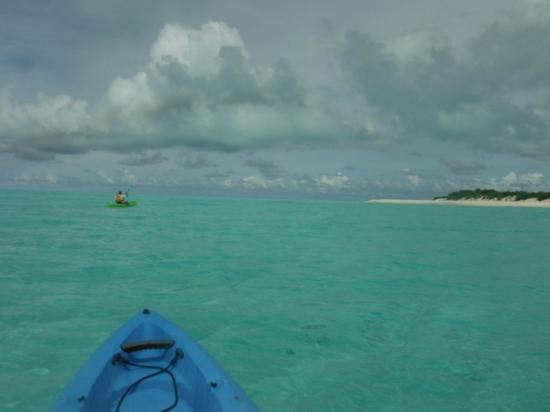 Midway Atoll: Kayaking