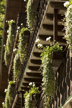 Hôtel Aux Mille Etoiles : Fleurs aux balcons