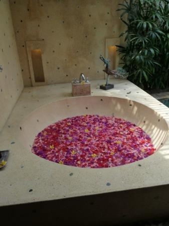 Jamahal Private Resort & Spa: le jour de notre arrivee!