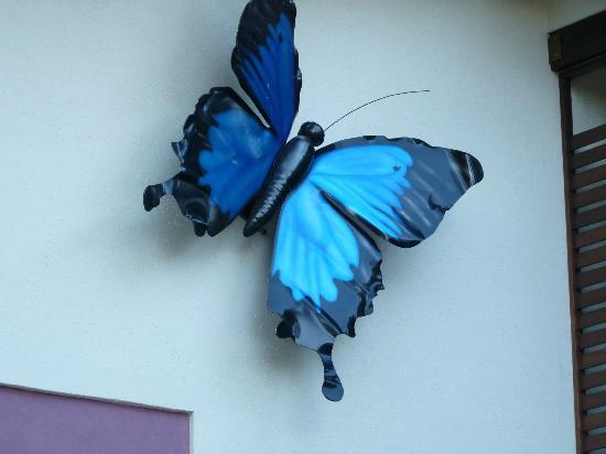 Freestyle Resort Port Douglas: large butterfly on front of building
