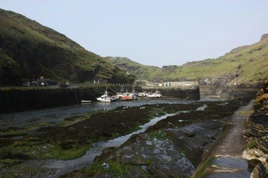 Boscastle, UK: Boscatle