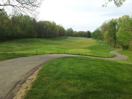 Shepherd's Hollow Golf Club: Shepherd's Hollow Hole 10