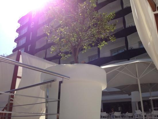 Belroy Hotel: giant plant pots and cabanas at the poolside bar