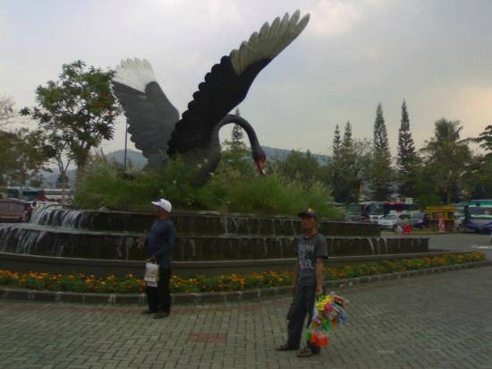 Taman Bunga Nusantara: angsa atau bangau...terserah dehhh