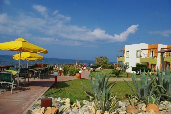 Alkionis Beach Hotel: beach area
