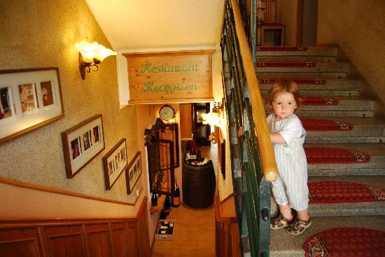 Hotel Diana U Kucharu: Лестница. Внизу ресепшн и ресторан, наверху комнаты.