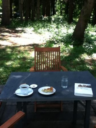 Arte Piazza Bibai: アルテカフェテラス お気に入りの森