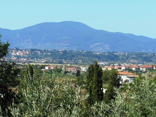 Agriturismo Montalto: Panorama dalla camera