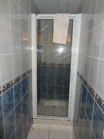 Porth Lodge Hotel : Shower room, on arrival