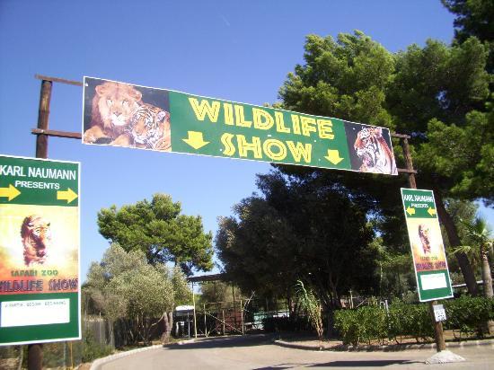 Protur Vista Badia Aparthotel: Safari Park Zoo (Wildife show)