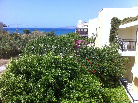 Golden Bay Hotel: The view over the Hibiscus trees.
