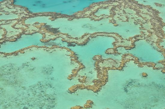 Heart Reef: Great Barrier Reef