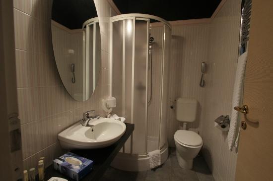 Hotel President Pantovcak: Bathroom for a standard room