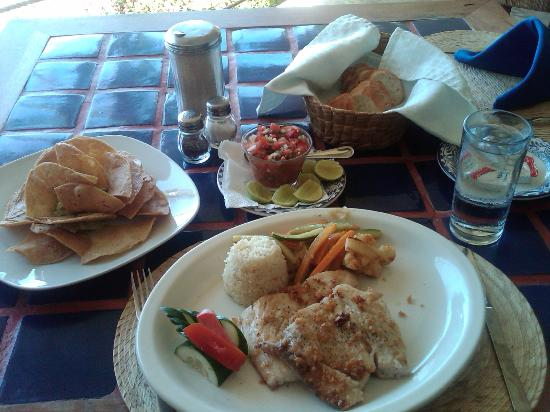 Catalina Beach Resort: Fresh caught Mahi Mahi - Very nice in garlic & lime juice