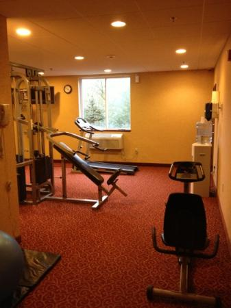 Best Western Dartmouth Inn: small fitness center