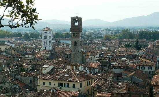 Guinigi Tower: View
