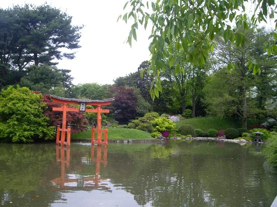 Paseando Picture Of Brooklyn Botanic Garden Brooklyn Tripadvisor
