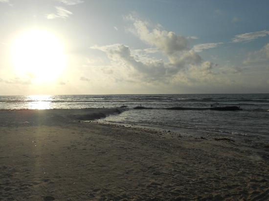 Secrets Silversands Riviera Cancun: Sunrise at the beach