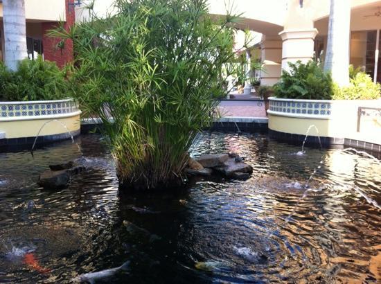 Miromar Outlets: Peces en la fuente! 