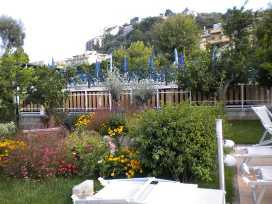 B&B Il Roseto: giardino 2