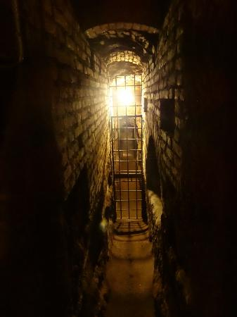 Gioia Private Tours & Trips: catacombs