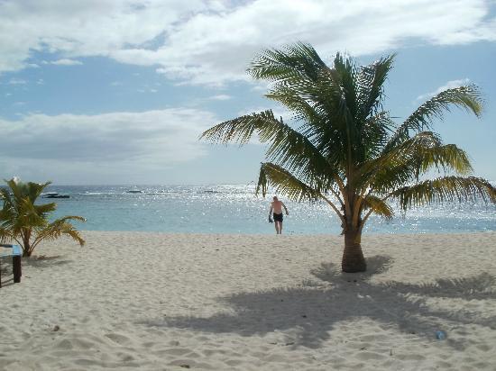 Falealupo Beach Fales: Udsigt fra hytten