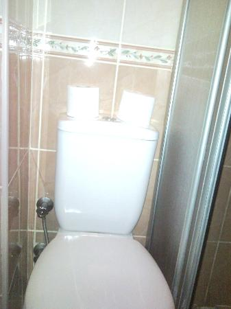 Fors Hotel: In conveniently placed toilet