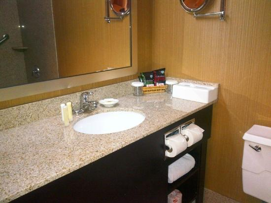 Crowne Plaza Grand Rapids (Airport): Very small bathroom