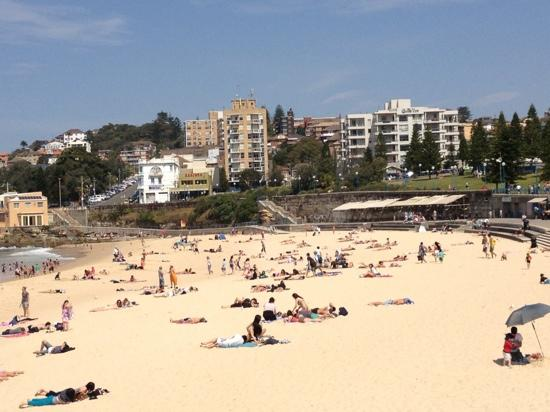 Coogee Sands Hotel & Apartments: coogee in spring