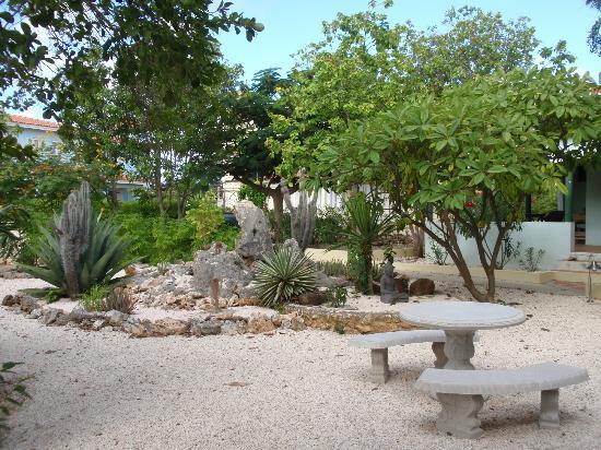 Caribbean Club Bonaire : Hotelgarten