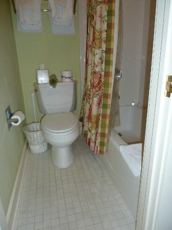 Noble Inns - The Oge House, Inn on the Riverwalk: Basement suite bath