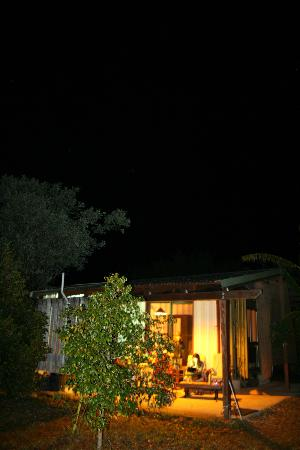 Hill Top Farmstay Accommodation Cooktown: The night sky - photos cannot do justice