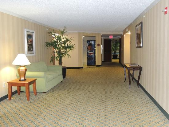 Holiday Inn Express Hotel & Suites Universal Studios Orlando: CORREDOR DO 8º ANDAR