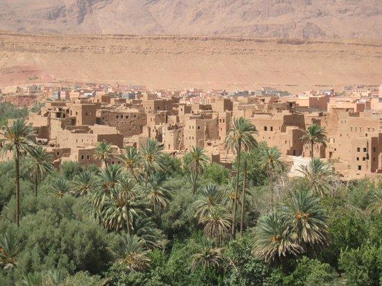 Tours Over Morocco Day Tours : La prima oasi